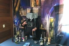 Paquiderme Punk preparando umas poções em Hogwarts