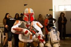 4 - Foto - Conselho Jedi RS